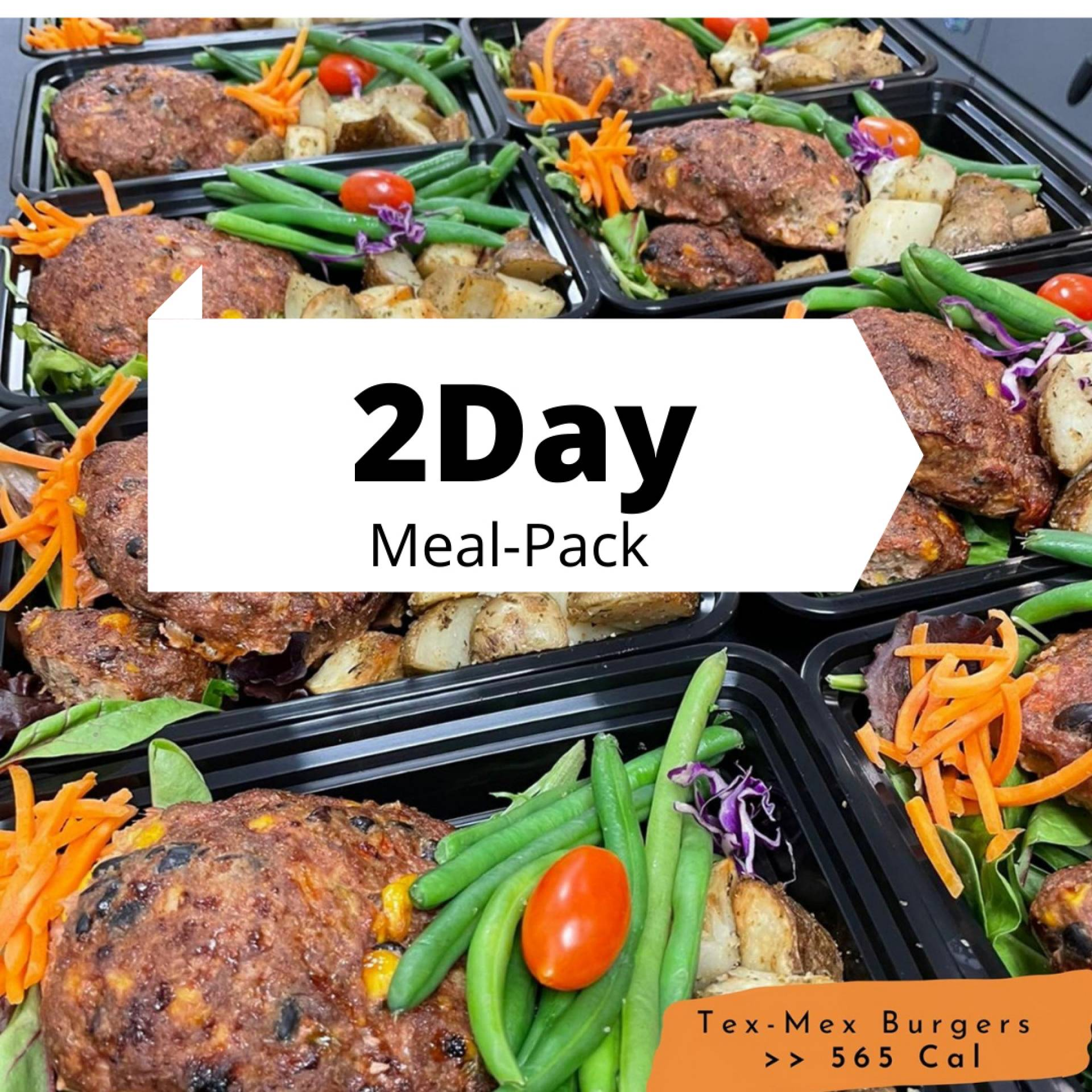 2Day - Meal Pack